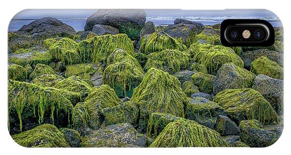 Moss Rocks IPhone Case