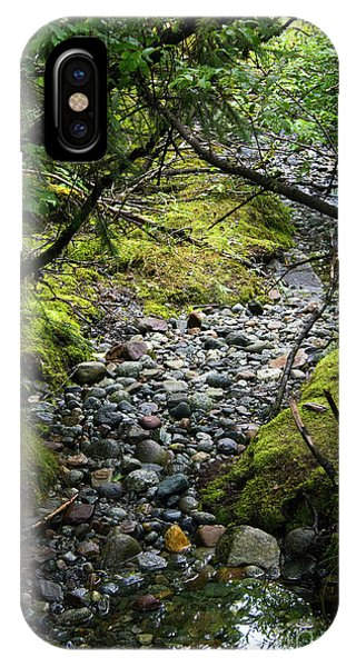 Moss Stream IPhone Case