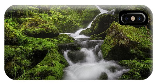 Mossy Fall #3 IPhone Case