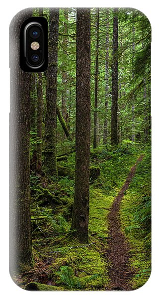 North Souixon Creek Mossy Trail IPhone Case