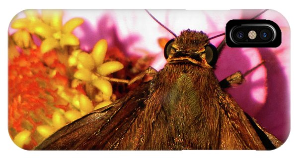 Moth On Pink And Yellow Flowers IPhone Case