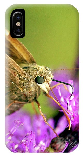 Moth On Purple Flower IPhone Case
