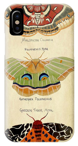 Moth Study IPhone Case