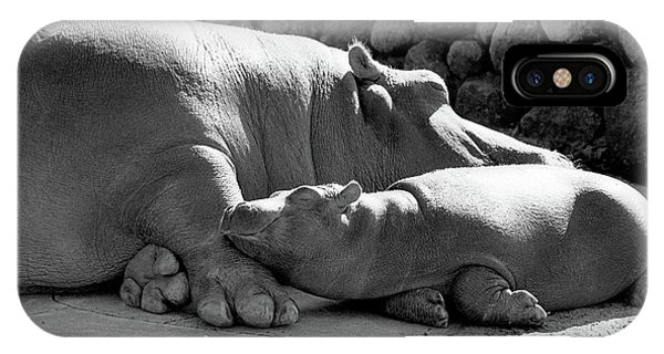 Mother And Baby Hippos IPhone Case