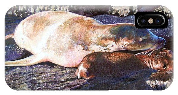Mother And Child Sea Lion IPhone Case