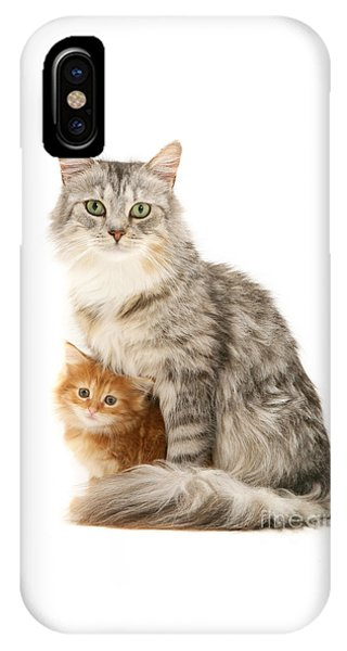 Mother Cat And Ginger Kitten IPhone Case