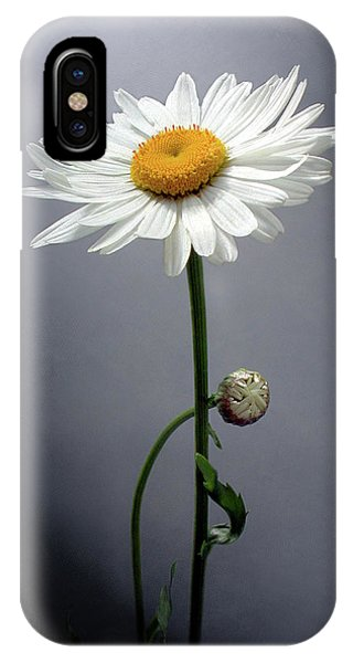 Mother Daisy IPhone Case