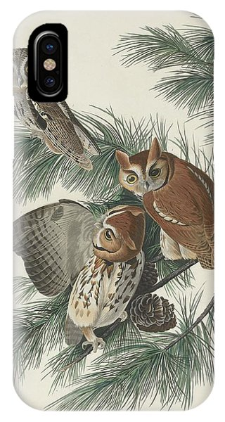 Mottled iPhone Case - Mottled Owl by Dreyer Wildlife Print Collections