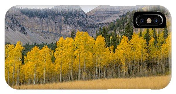Mount Timpanogos Meadow In Fall IPhone Case