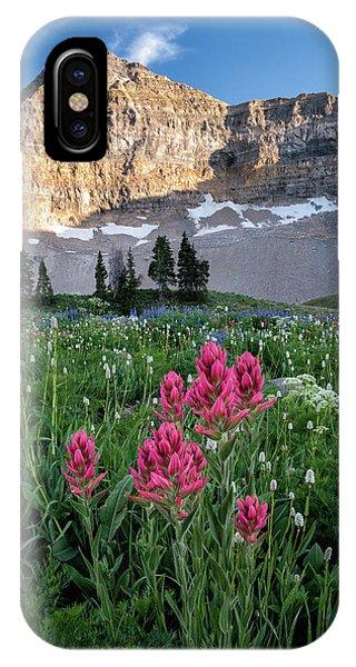 Mount Timpanogos Wildflowers IPhone Case