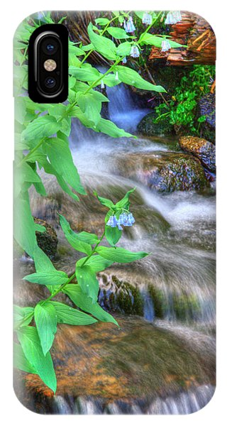 Mountain Bluebells IPhone Case