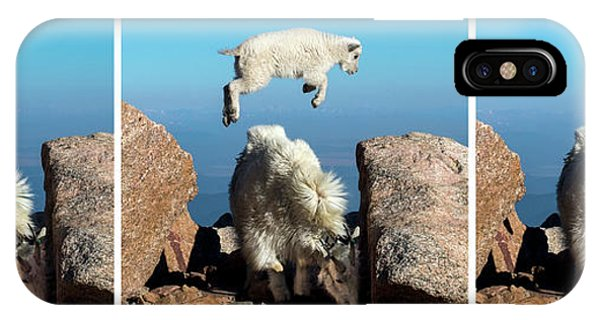 Mountain Goat Leap-frog Triptych IPhone Case