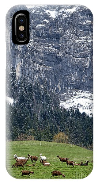Alpine Meadows iPhone Case - Mountain Goats Mountain by Olivier Le Queinec