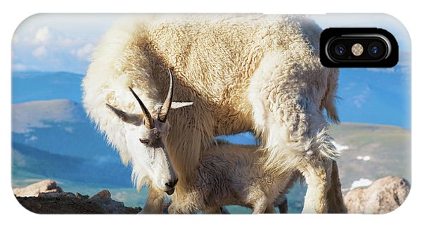 Mountain Goats Nanny And Kid IPhone Case