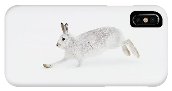 Mountain Hare Running IPhone Case