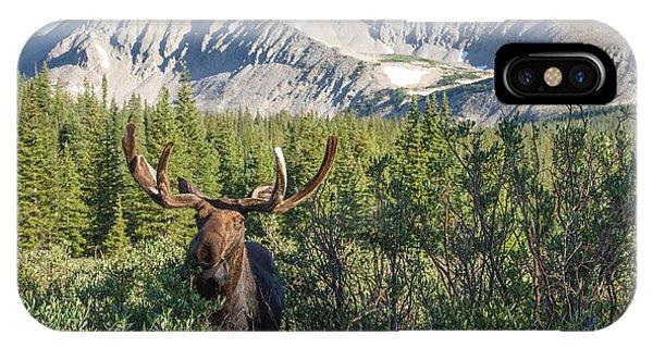Mountain Moose IPhone Case