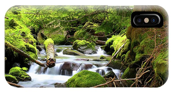 Mountain Stream In The Pacific Northwest IPhone Case