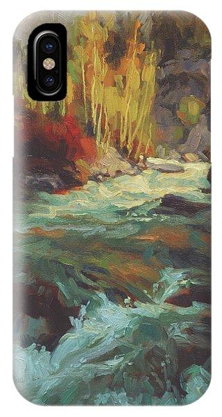 Stream iPhone Case - Mountain Stream by Steve Henderson