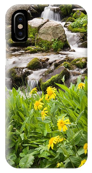 Mountain Waterfall And Wildflowers IPhone Case