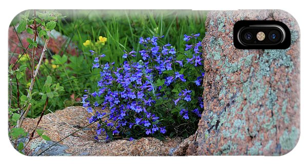 IPhone Case featuring the photograph Mountain Wildflowers by Shane Bechler