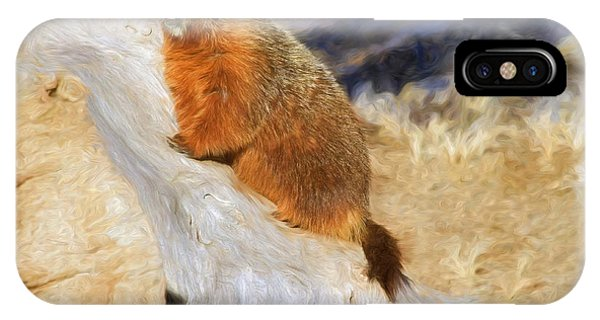 Groundhog iPhone Case - Mountains To Climb by Donna Kennedy