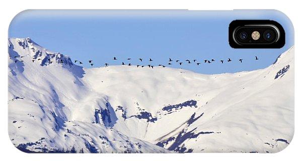 Mountaintop Geese IPhone Case