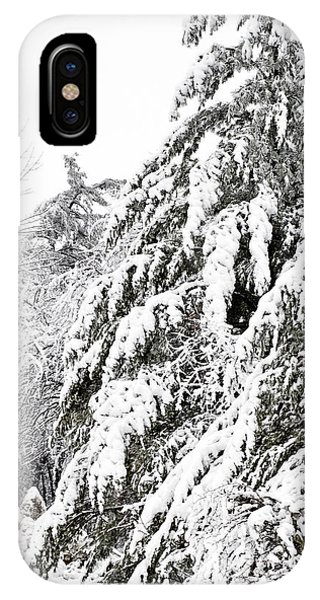 Mourn The Winter IPhone Case