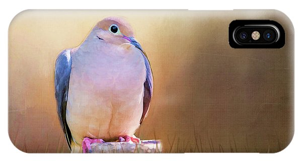 Mourning Dove Painted Portrait IPhone Case