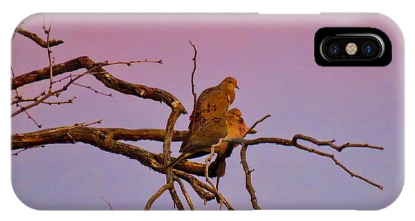 Mourning Doves IPhone Case