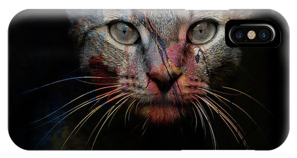 Mixed iPhone Case - Mr Bo by Paul Lovering