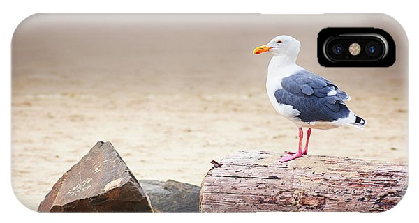 Mr. Seagull IPhone Case