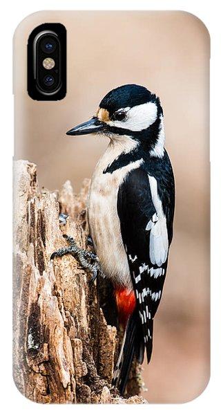 Mrs Woodpecker IPhone Case