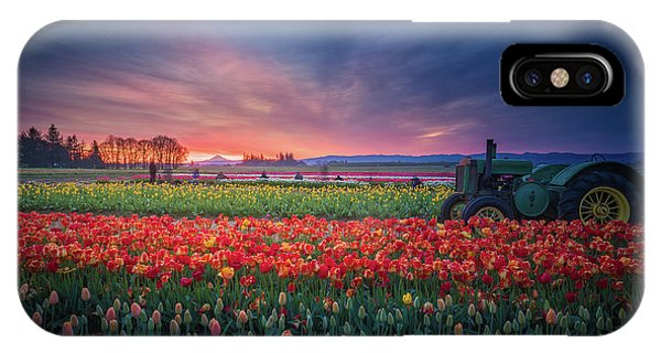 Mt. Hood And Tulip Field At Dawn IPhone Case