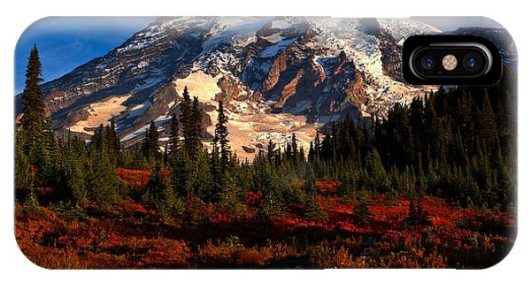 Mt. Rainier Paradise Morning IPhone Case