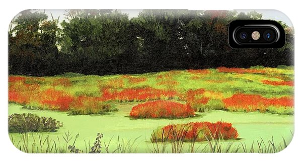 Mud Lake Marsh IPhone Case