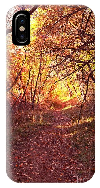 Mueller Park In The Fall IPhone Case