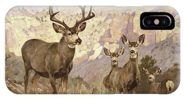 Mule Deer iPhone Case - Mule Deer In The Badlands, Dawson County, Montana by Rungius Carl