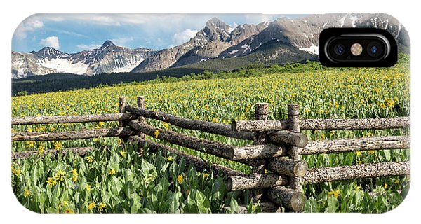 IPhone Case featuring the photograph Mule's Ears And Mountains by Denise Bush
