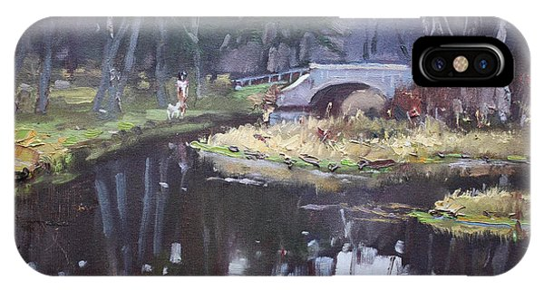 Waterscape iPhone Case - Murder Creek Ny by Ylli Haruni