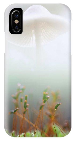 Double iPhone Case - Mushroom Dreams, Mycena Galericulata by Dirk Ercken