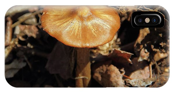 Mushroom Rising IPhone Case