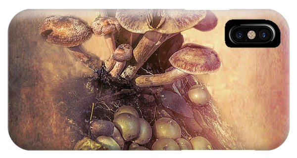 Ingredient iPhone Case - Mushrooms Gone Wild by Marvin Spates