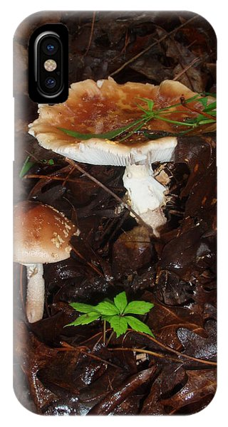 Mushrooms Rising IPhone Case