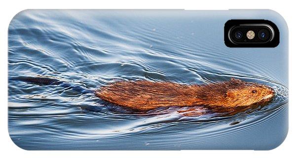 Muskrat Speed Swiming IPhone Case