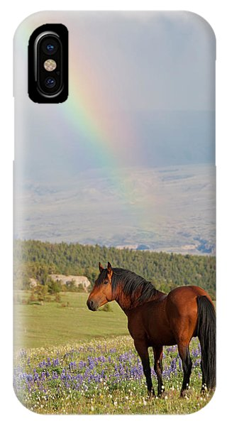 Mustang And Rainbow IPhone Case
