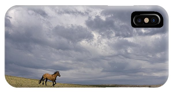 Mustang And Stormy Sky IPhone Case