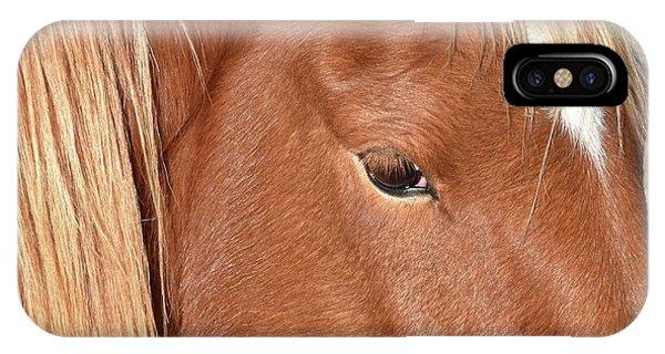 Mustang Macro IPhone Case