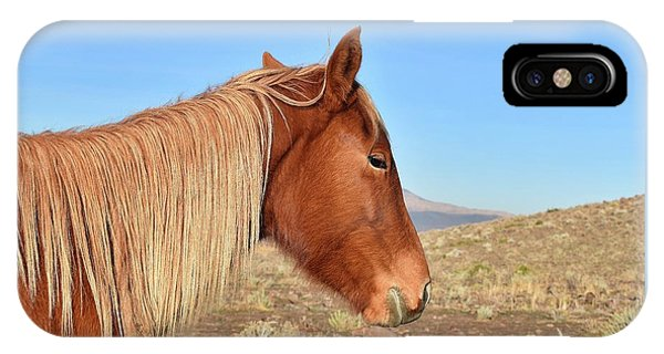 Mustang Mare IPhone Case