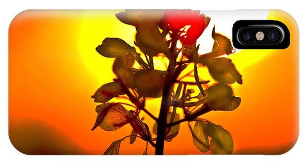 Mustard Sunset IPhone Case