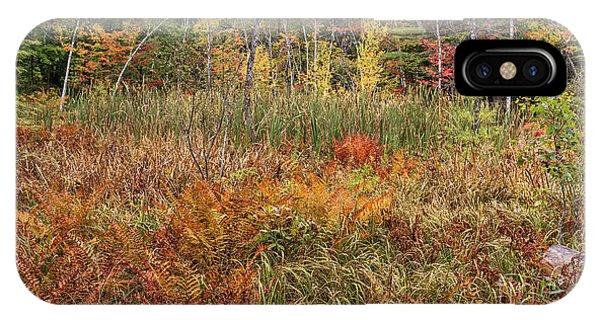 New England Fall Foliage iPhone Case - My Backyard In Autumn by Edward Fielding